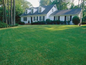 Home with a beautiful lawn