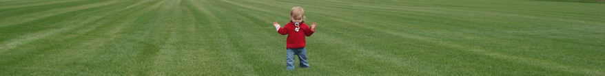 Toddler walking in a turfgrass growing field